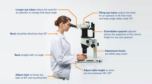 Optimum ergonomics for microscopy